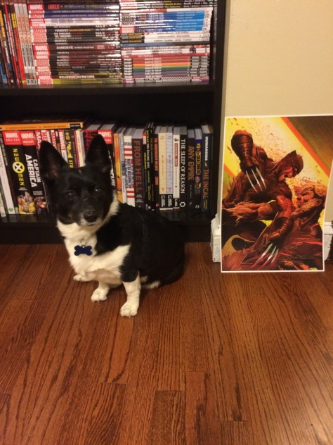 Sophie would like to also show you this fabulous Wolverine & Sabertooth print from the cover of Uncanny X-Force #32 signed by superstar artist Jerome Opena