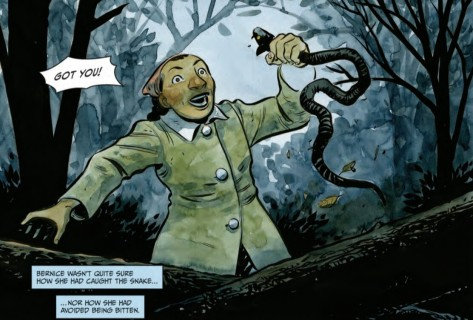 From Harrow County #11 by Tyler Crook