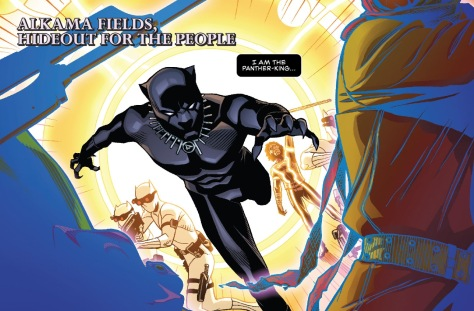 From Black Panther #5 by Chris Sprouse, Laura Martin & Karl Story