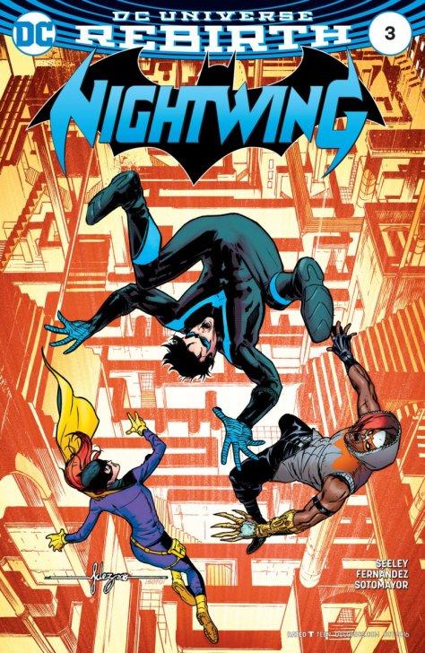 Nightwing3