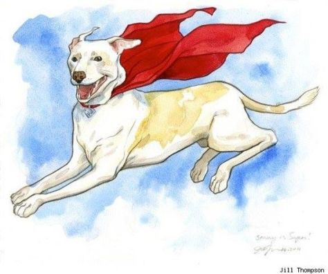 krypto-jill-thompson