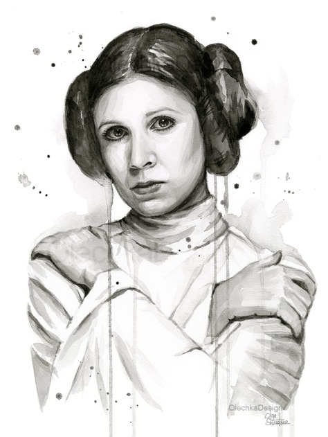 princess-leia-olechkadesign