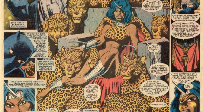 The Black Panther's 70's Rage