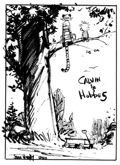 Calvin & Hobbes Sean Murphy