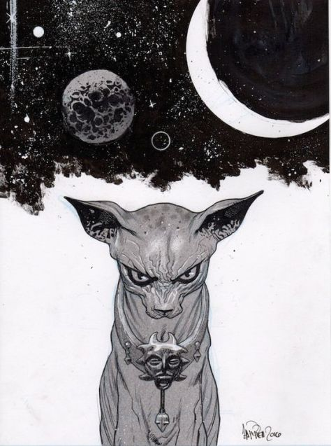 Lying Cat James Harren